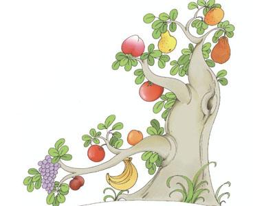 一棵树上十样果